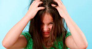 lice in children