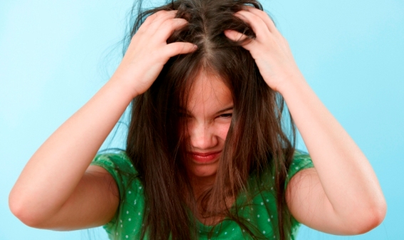 lice in children